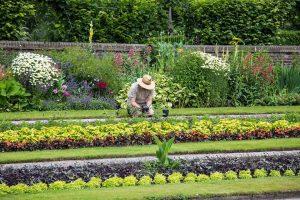 Quels sont les tarifs d'un jardinier à domicile ?