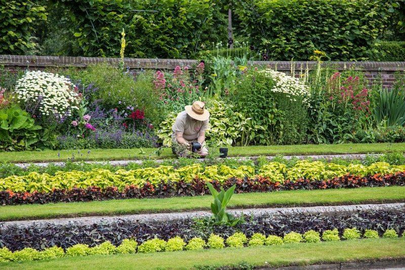 Quels sont les tarifs d'un jardinier à domicile?